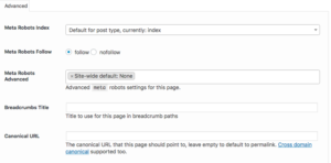 How to Use Canonical URLs